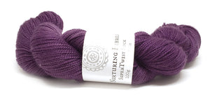 Nurturing Fibres SuperTwist Sock in Imperial