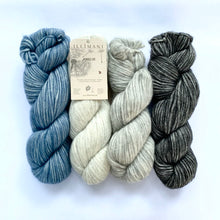 Load image into Gallery viewer, Illimani's Amelie Yarn in 4 colours, full skeins