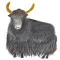 Load image into Gallery viewer, Illimani | Santi: Yak, Silk, Merino & Baby Alpaca Yarn
