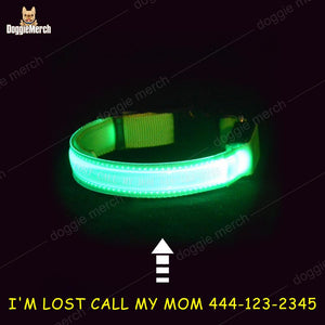 Custom Night Safety Collar with Shining LED Light