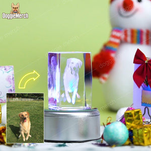 Custom 3D Photo Engraved Crystal Lamp of Your Pet