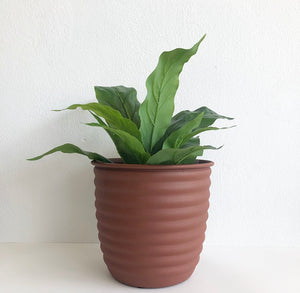 Pot - Ribbed Terracotta