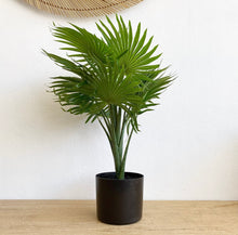 Load image into Gallery viewer, Faux - Fan Palm