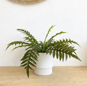 Faux - Fish Bone Fern
