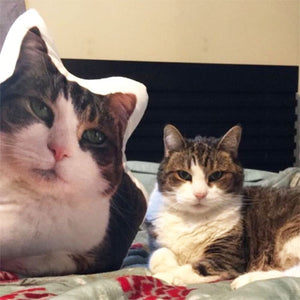 Custom Cat Pillow