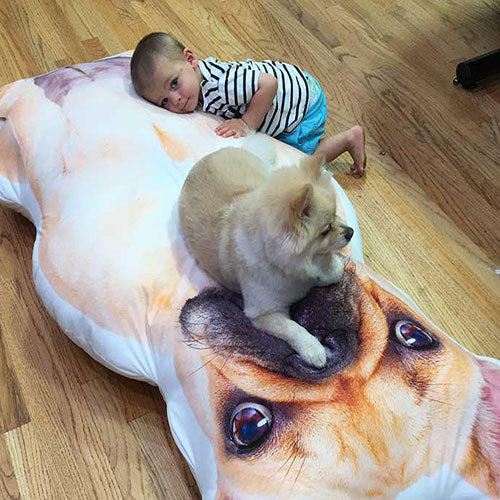Custom Giant Pillow
