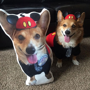 Custom Dog Pillow
