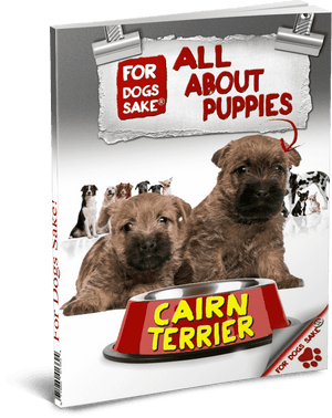 For Dogs Sake! Download Default Title All About Cairn Terrier Puppies