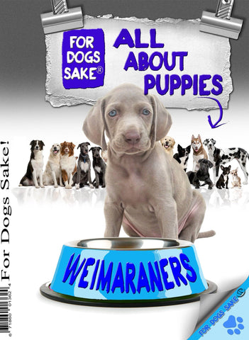 For Dogs Sake! Download Default Title All About Weimaraner Puppies