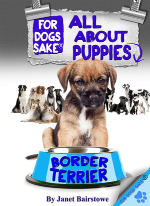 For Dogs Sake! Download Default Title All About Border Terrier Puppies