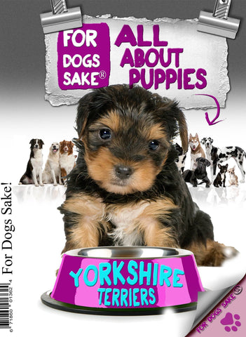 For Dogs Sake! Download Default Title All About Yorkshire Terrier Puppies