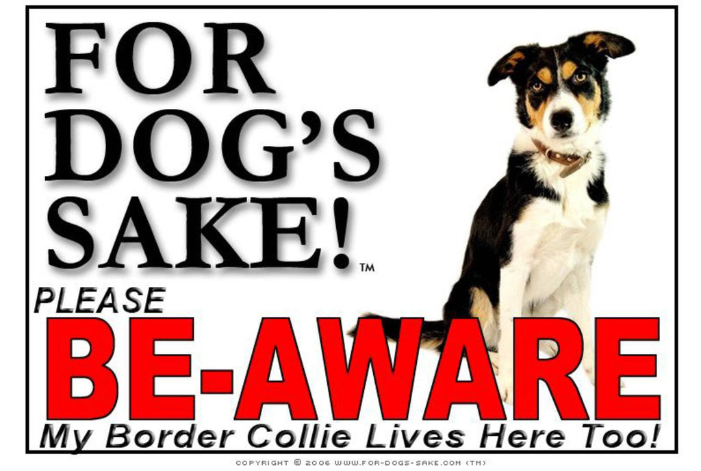 For Dogs Sake! Image10 / Adhesive Vinyl Border Collie Be-Aware Sign