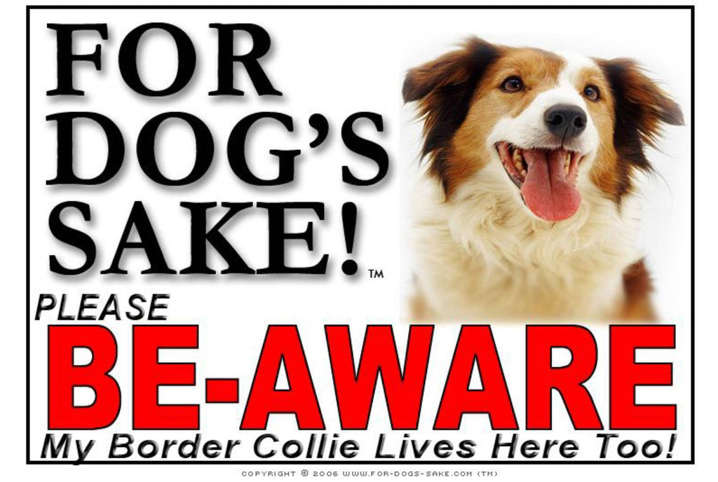 For Dogs Sake! Image2 / Adhesive Vinyl Border Collie Be-Aware Sign