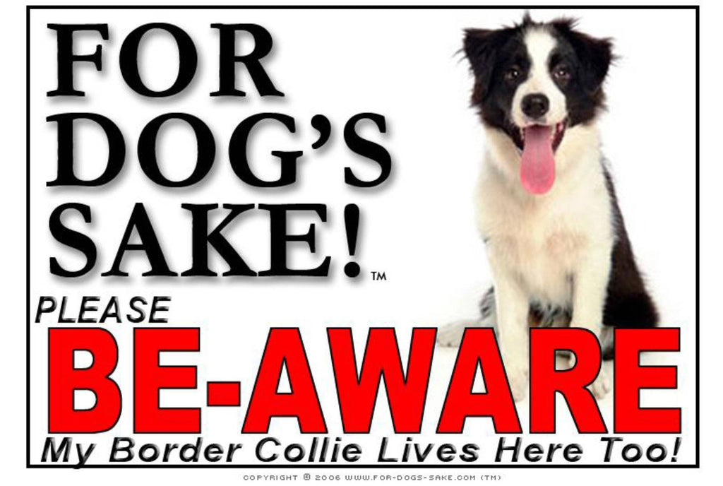 For Dogs Sake! Image3 / Adhesive Vinyl Border Collie Be-Aware Sign