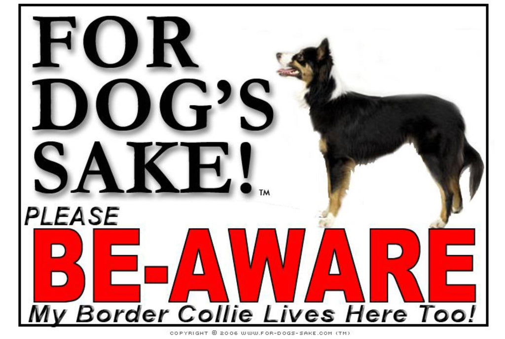 For Dogs Sake! Image5 / Adhesive Vinyl Border Collie Be-Aware Sign