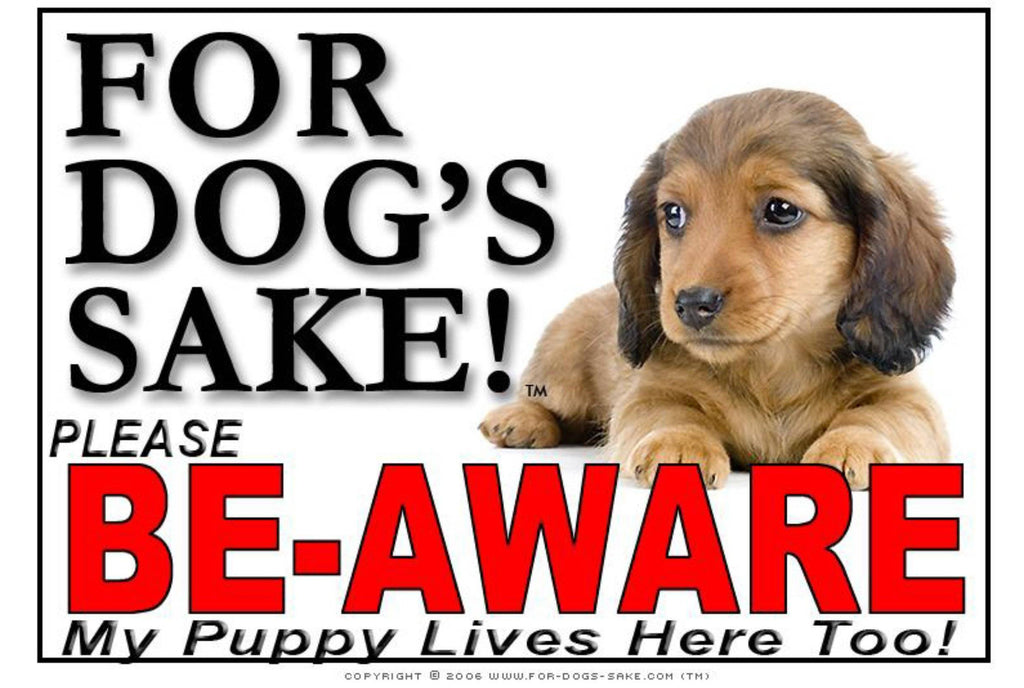 For Dogs Sake! Image24 / Adhesive Vinyl Puppy Be Aware Sign