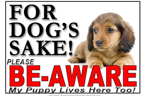 Image of For Dogs Sake! Image24 / Adhesive Vinyl Puppy Be Aware Sign