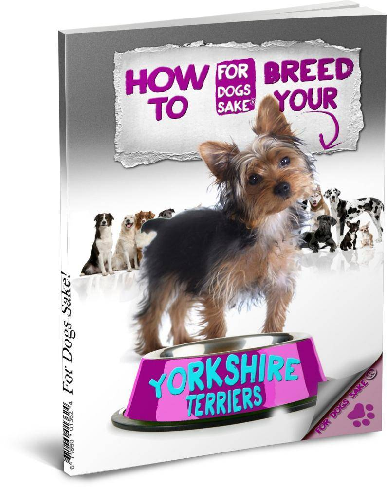 For Dogs Sake! Download Default Title How to Breed your Yorkshire Terrier