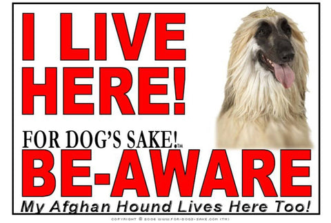 Image of For Dogs Sake! Image1 / Adhesive Vinyl Afghan Hound I Live Here Sign