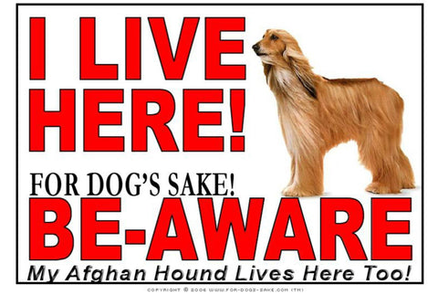 For Dogs Sake! Image3 / Adhesive Vinyl Afghan Hound I Live Here Sign