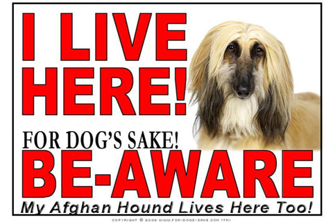 For Dogs Sake! Image5 / Adhesive Vinyl Afghan Hound I Live Here Sign