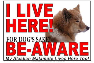 For Dogs Sake! Image1 / Adhesive Vinyl Alaskan Malamute I Live Here Sign