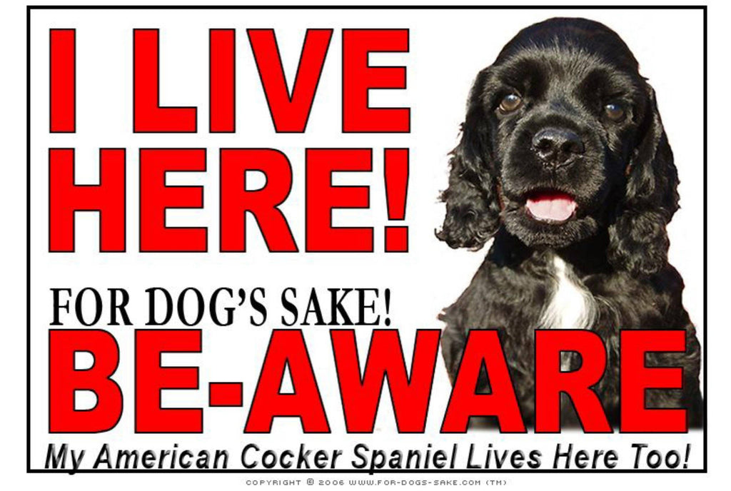 For Dogs Sake! Image16 / Adhesive Vinyl American Cocker SpanieI Live Here Sign