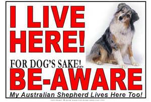Australian Shepherd I Live Here Sign