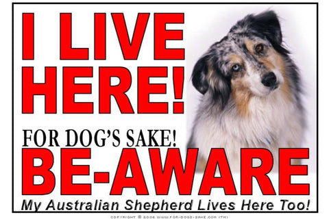 For Dogs Sake! Image3 / Adhesive Vinyl Australian Shepherd I Live Here Sign