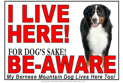 For Dogs Sake! Image1 / Adhesive Vinyl Bernese Mountain Dog I Live Here Sign