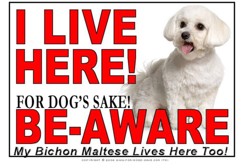 Image of For Dogs Sake! Image1 / Adhesive Vinyl Bichon Maltese I Live Here Sign