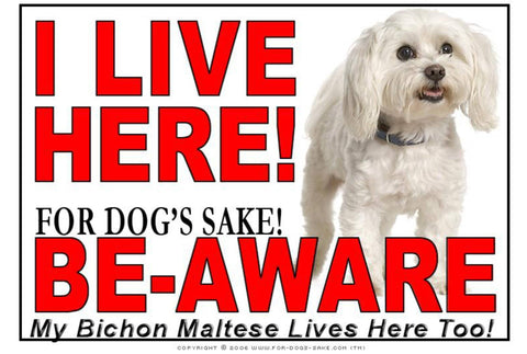 For Dogs Sake! Image1 / Adhesive Vinyl Bichon Maltese I Live Here Sign