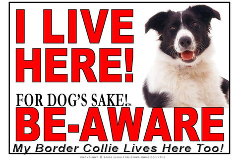 For Dogs Sake! Image1 / Adhesive Vinyl Border Collie I Live Here Sign