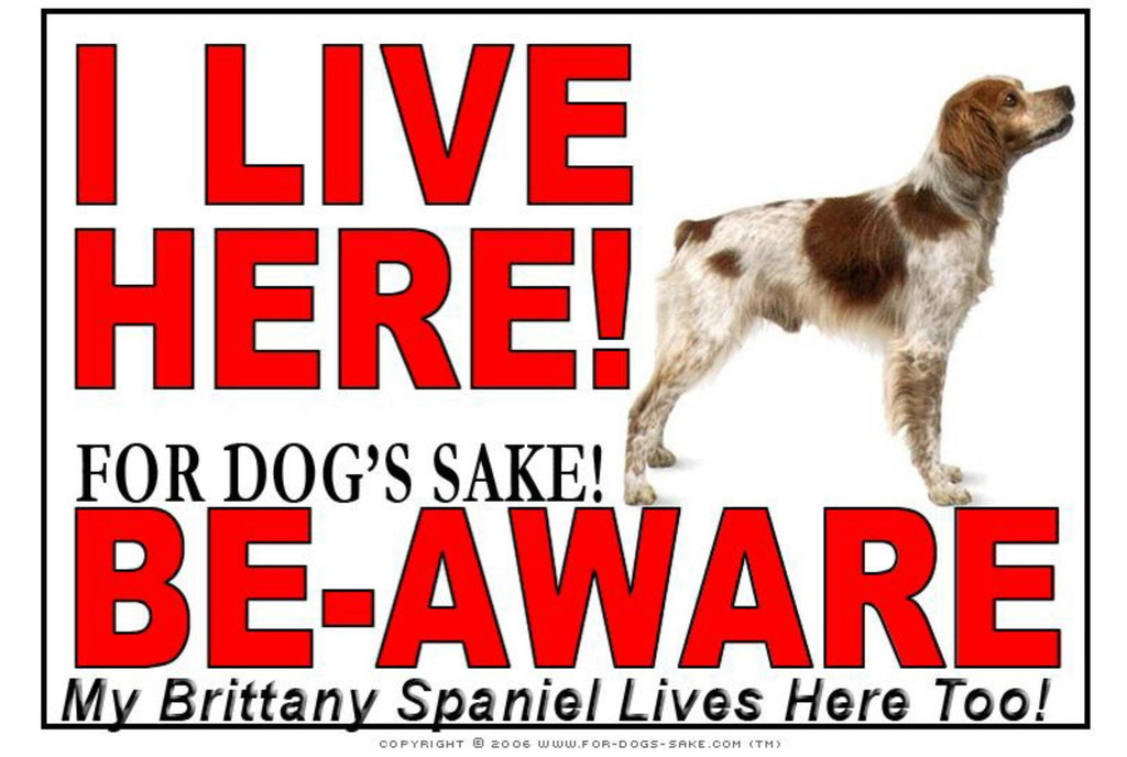 For Dogs Sake! Image1 / Adhesive Vinyl Brittany Spaniel I Live Here Sign