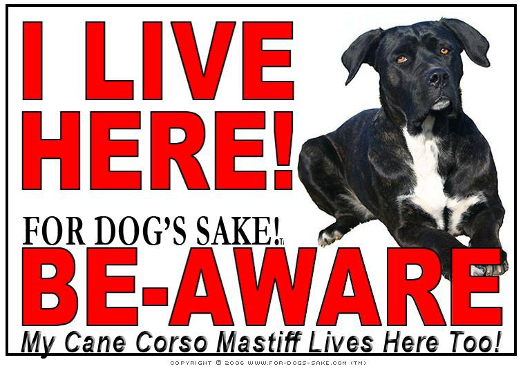 For Dogs Sake! Cane Corso Image2 / Adhesive Vinyl Cane Corso Mastiff I Live Here Sign