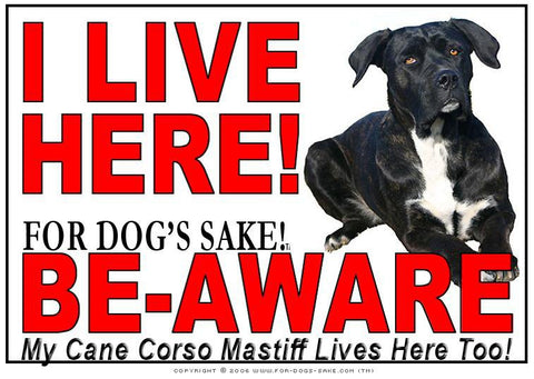 Image of For Dogs Sake! Cane Corso Image2 / Adhesive Vinyl Cane Corso Mastiff I Live Here Sign