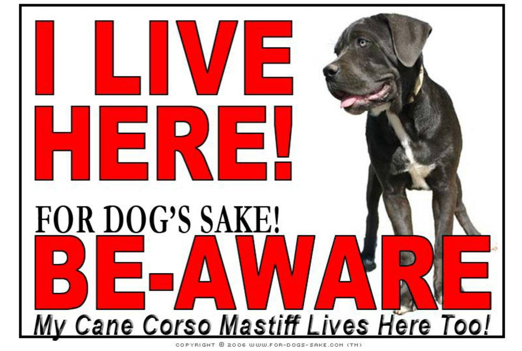 For Dogs Sake! Image3 / Adhesive Vinyl Cane Corso Mastiff I Live Here Sign