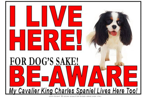 Image of For Dogs Sake! Image1 / Adhesive Vinyl Cavalier King Charles Spaniel I Live Here Sign