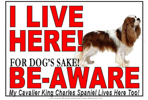 Image of For Dogs Sake! Image2 / Adhesive Vinyl Cavalier King Charles Spaniel I Live Here Sign