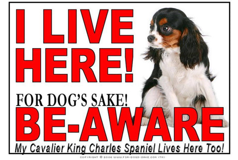 Image of For Dogs Sake! Image3 / Adhesive Vinyl Cavalier King Charles Spaniel I Live Here Sign