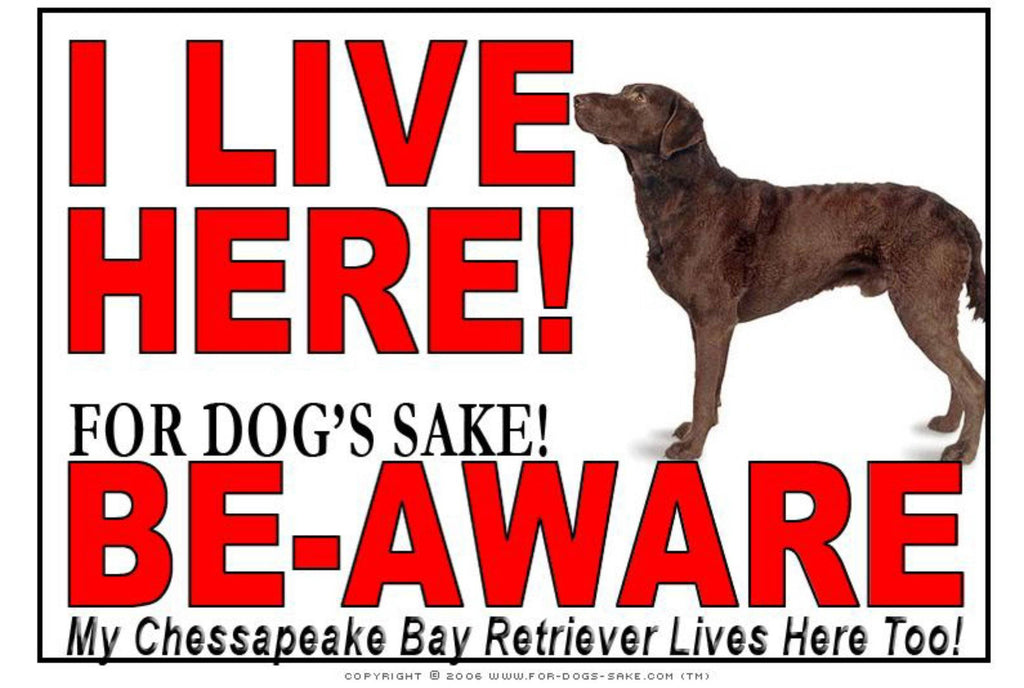 For Dogs Sake! Image1 / Adhesive Vinyl Chessapeake Bay Retriever I Live Here Sign