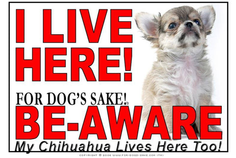 For Dogs Sake! Image15 / Adhesive Vinyl Chihuahua I Live Here Sign