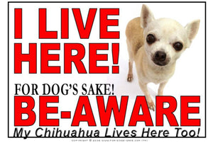 For Dogs Sake! Image1 / Adhesive Vinyl Chihuahua I Live Here Sign