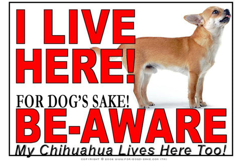 For Dogs Sake! Image3 / Adhesive Vinyl Chihuahua I Live Here Sign