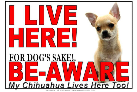 For Dogs Sake! Image4 / Adhesive Vinyl Chihuahua I Live Here Sign