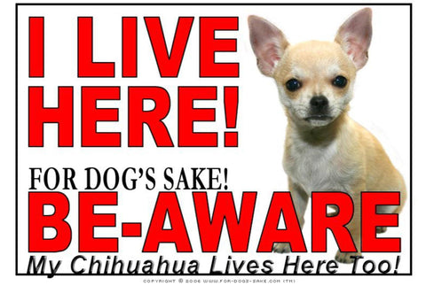 For Dogs Sake! Image7 / Adhesive Vinyl Chihuahua I Live Here Sign