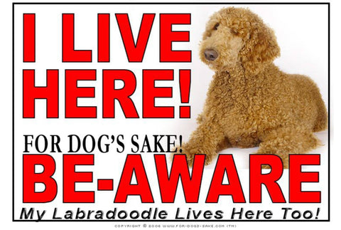 For Dogs Sake! Image1 / Adhesive Vinyl Labradoodle I Live Here Sign