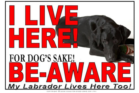 For Dogs Sake! Image1 / Adhesive Vinyl Labrador Retriever I Live Here Sign