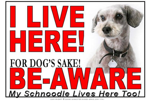 For Dogs Sake! Image1 / Adhesive Vinyl Schnoodle I Live Here Sign