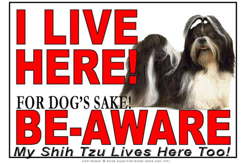 For Dogs Sake! Image1 / Adhesive Vinyl Shih Tzu Dog I Live Here Sign